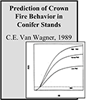 VanWagner_1989_Proc10thConf_86x100.png