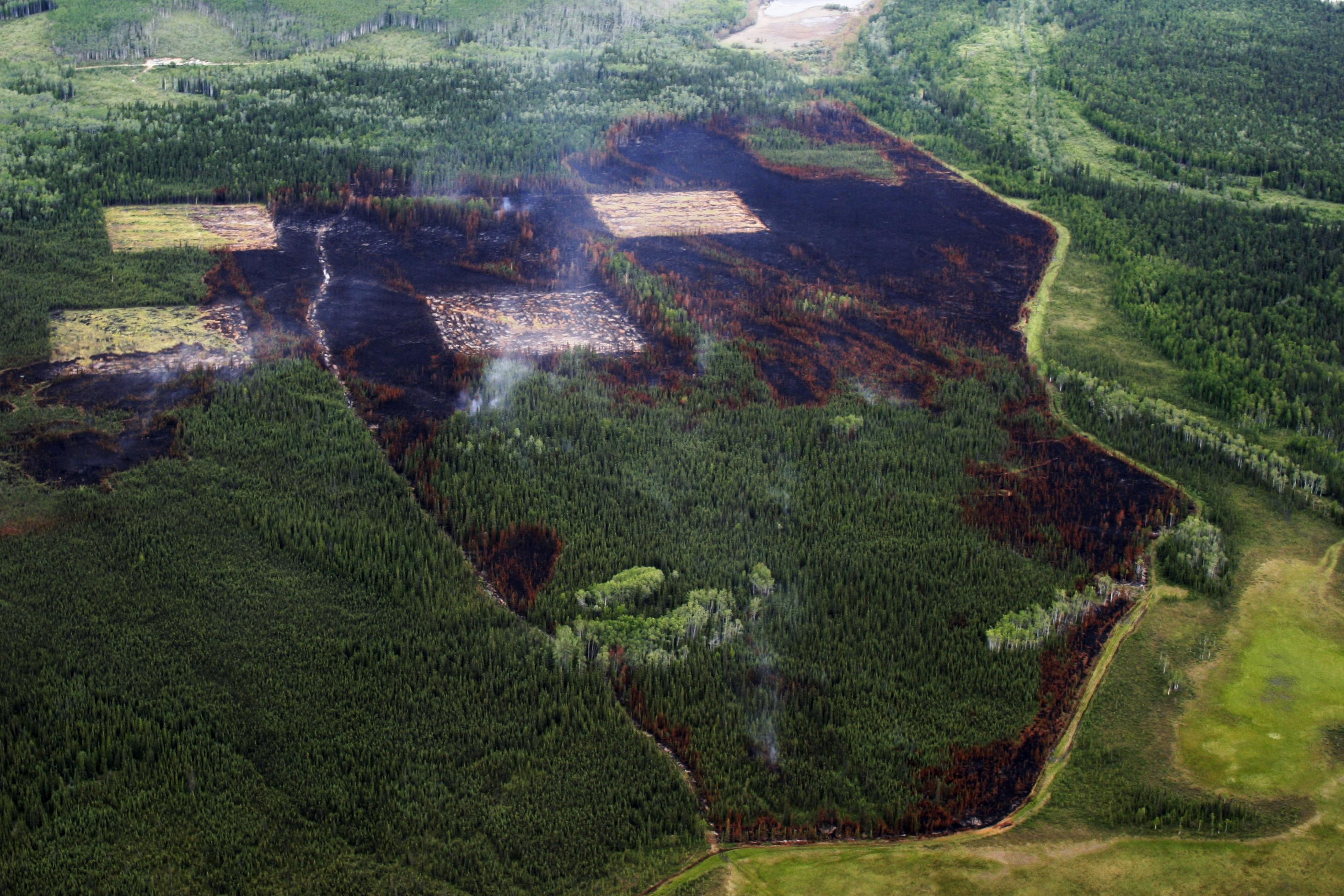 Aerial Photo of Nenana Ridge Project