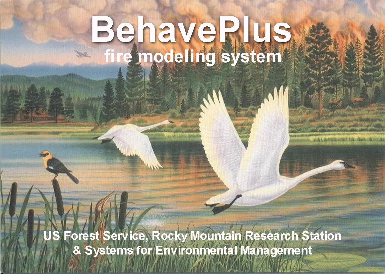 BehavePlus graphic