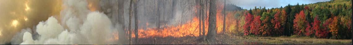 Eastern Fire Portal