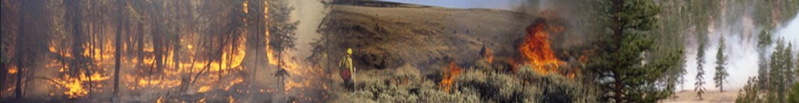 Northwest Fire Portal