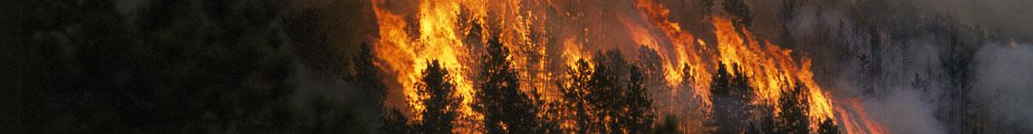 Fire Behavior Portal