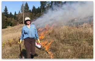 Idaho Prescribed Fire Council fire line image